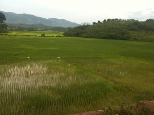 Laos – Change of Pace…